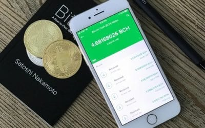 Cryptocurrencies: Global Acceptance or Niche Disruptor?